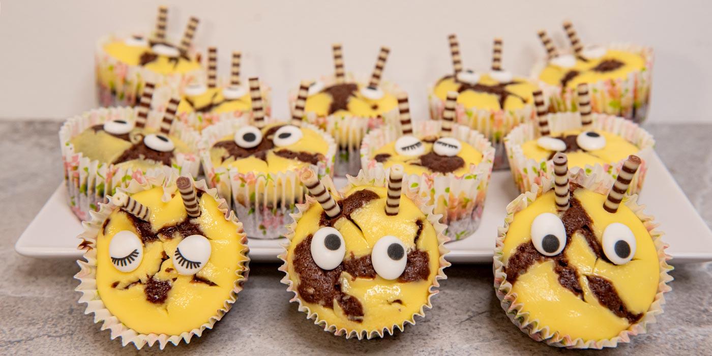 chocolate-cheesecake-muffins-main